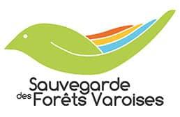 Coaching individuel et collectif Toulon QVT